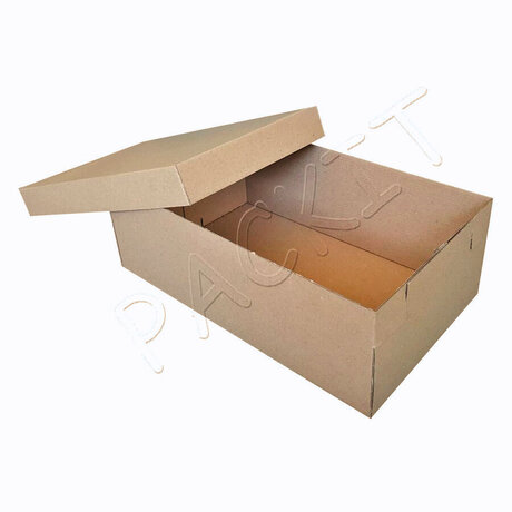 Shoe box (small)
